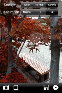 Des feuilles rouges, quelle que soit la saison...