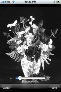 Black & White Photo Free